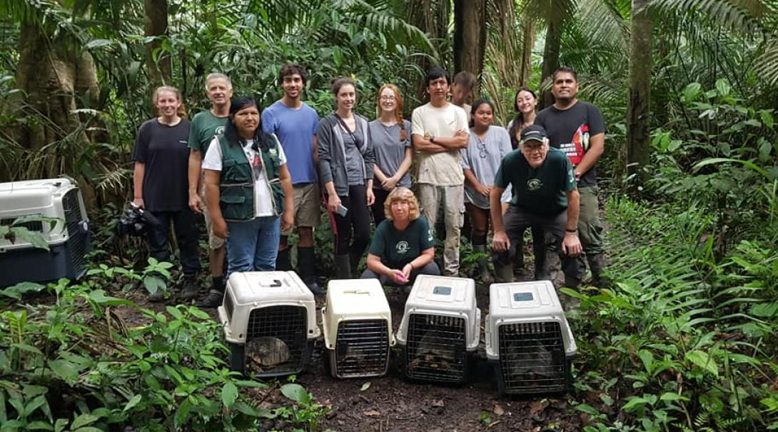 Projects Abroad volunteers stand behind kennels of tortoises that are going to be released into the wild
